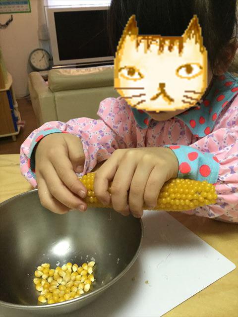 ポップコーン豆を一つずつ取り外す娘(子供)