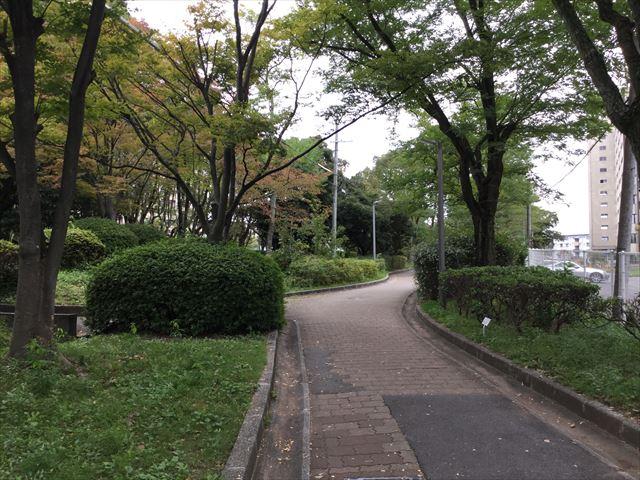 千里中央公園に行く歩行者道路