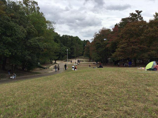 千里東町公園の芝生広場、丘の上から見た様子