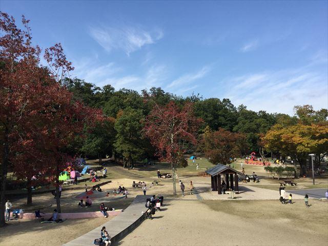 宝が池公園「子どもの楽園」