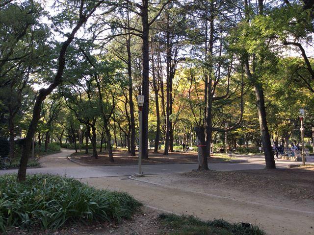 靭公園内の小路