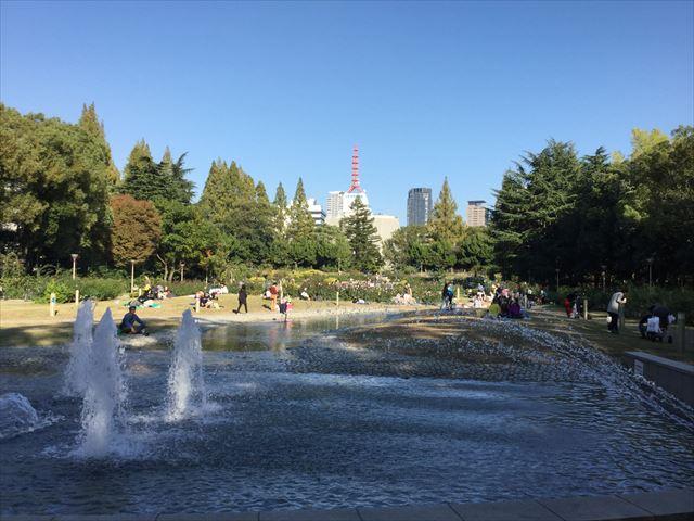 靭公園のバラ園と池