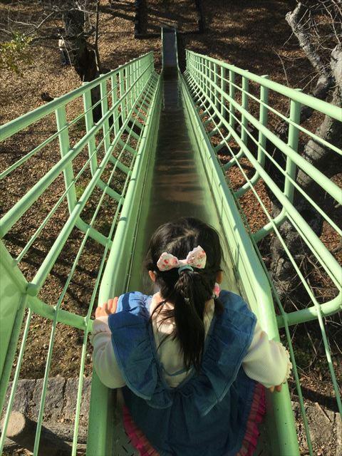 明石公園「子どもの村」ロングスライダー(長い滑り台)を上から撮影