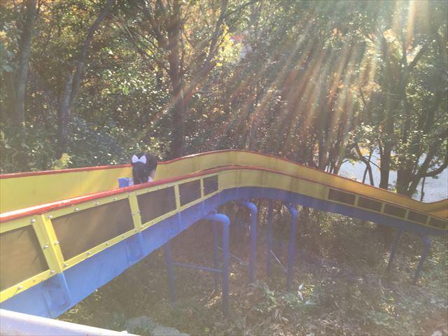 神戸総合運動公園「冒険のくに」長い滑り台