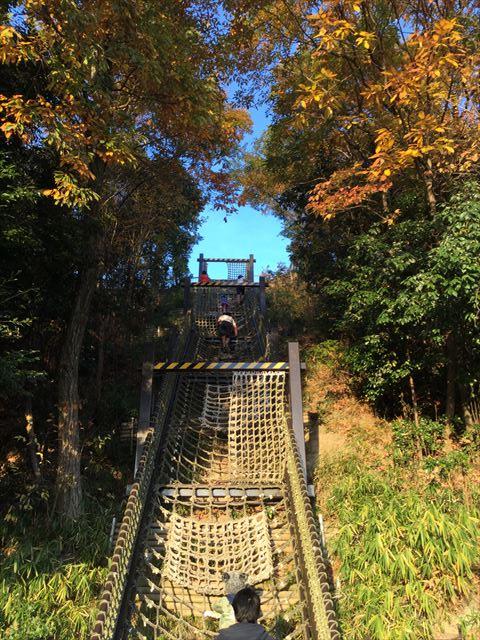 神戸総合運動公園「冒険のくに」縄はしご