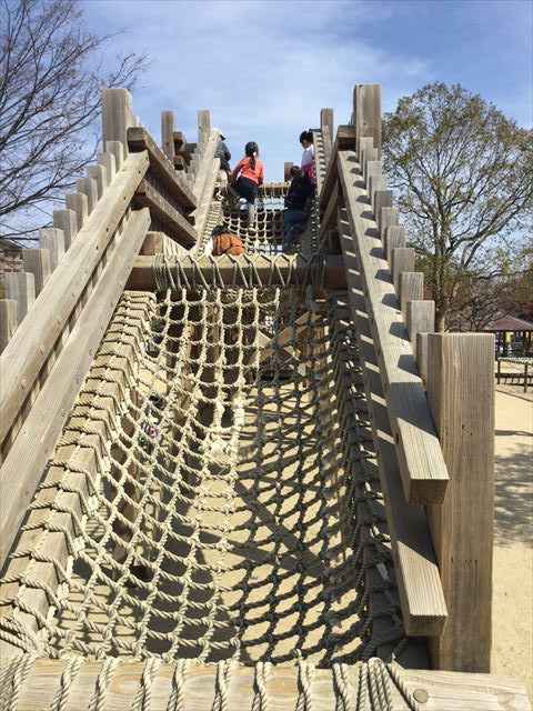 「佐井寺南が丘公園」アスレチック遊具、縄はしご側から撮影