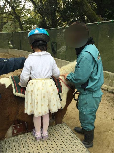 「五月山動物園」ポニー乗馬体験をする娘