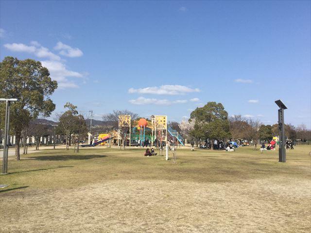 「末広中央公園」の遊具と芝生広場