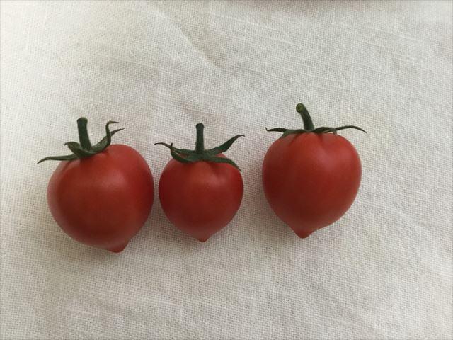 赤く実ったハートマト3個