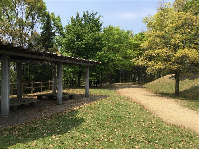 蜻蛉池公園丘の上