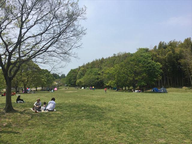 蜻蛉池公園の芝生広場でお弁当を食べている様子