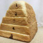 Pain de Singe(パンドサンジュ)の跳び箱パンを切って並べてみた