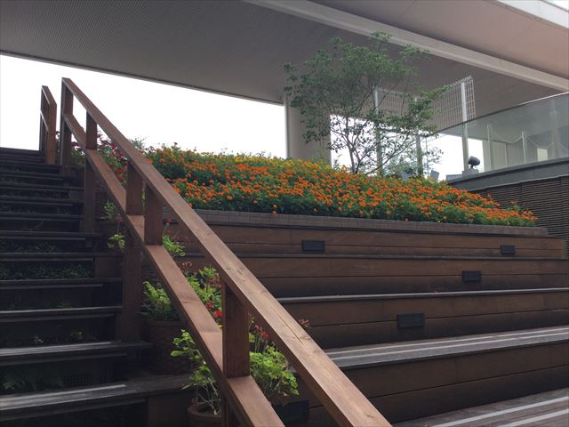 大丸心斎橋店北館屋上庭園、階段と花壇