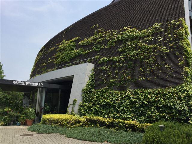 大阪市立自然史博物館の入口