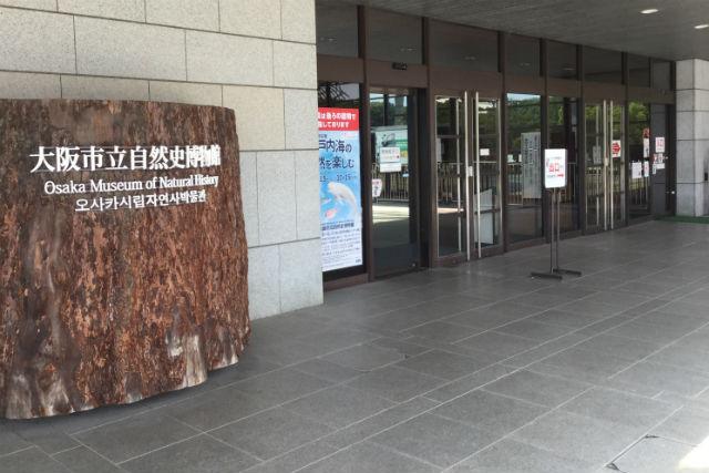大阪市立自然史博物館入口