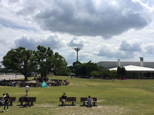 京都競馬場の公園「緑の広場」の広大な芝生