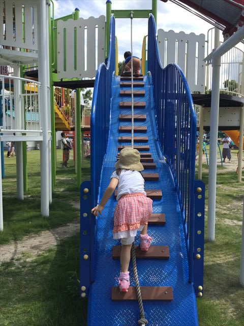京都競馬場の公園「緑の広場」の大型遊具、縄を持って上る階段