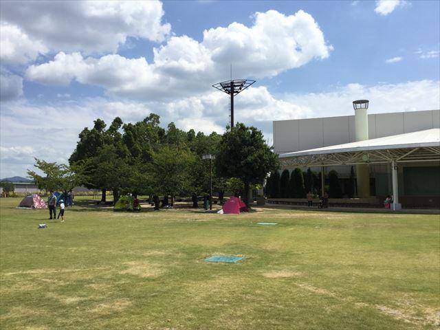 京都競馬場の公園「緑の広場」の広大な芝生、簡易テント