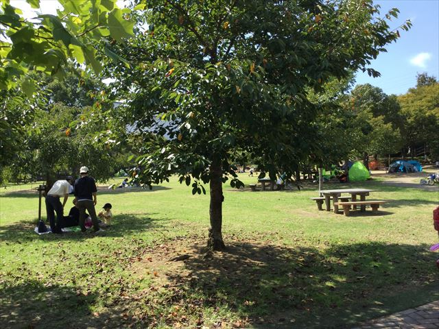 元浜緑地の芝生広場