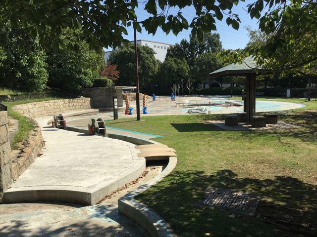 元浜緑地「わんぱく池」(夏季限定)
