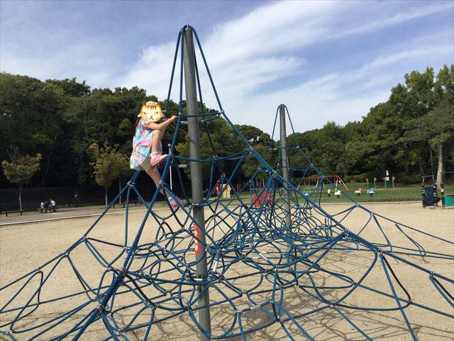 「住之江公園」縄型ジャングルジムで一番上まで上っている娘