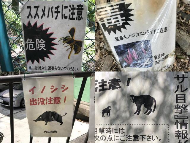 天王山登山の注意事項の表示(スズメバチ、イノシシ、サル目撃情報、毒キノコ)