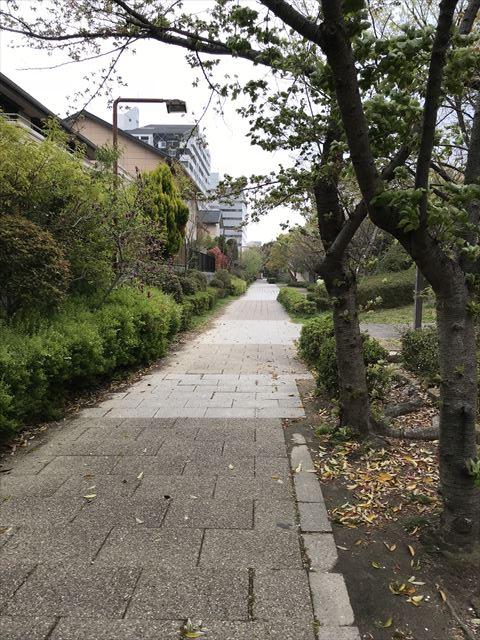 六甲アイランド「向洋西公園」から「向洋町中六丁目公園」に続く小道