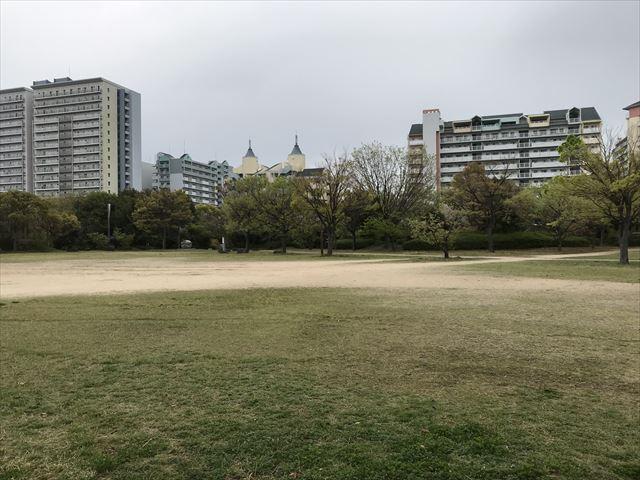 六甲アイランド「向洋西公園」芝生広場