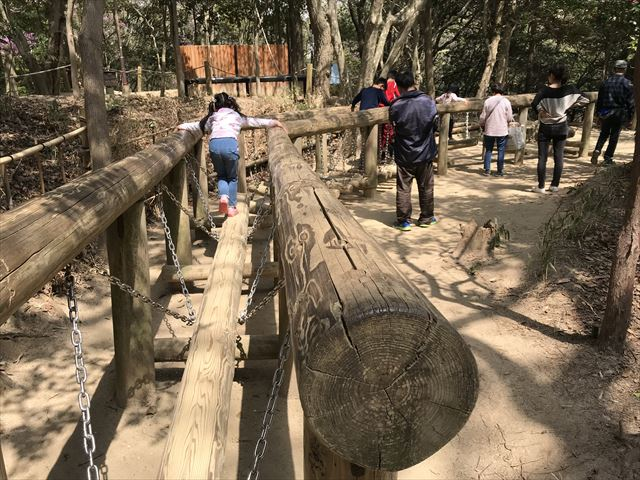 須磨離宮公園のアスレチック遊具、木の橋を歩く