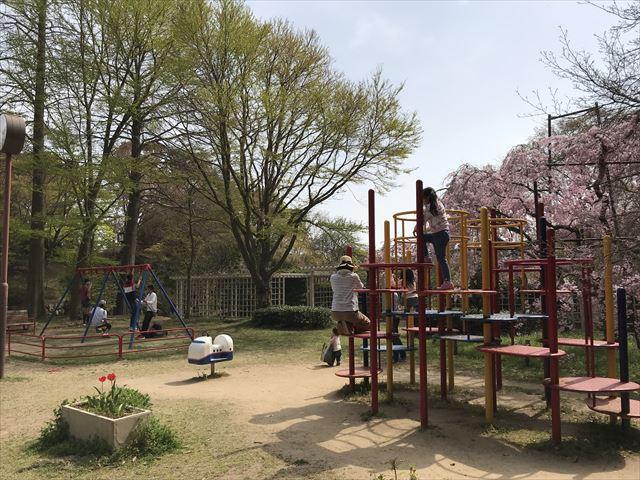 須磨離宮公園、植物園にあるミニ遊具・ジャングルジムやブランコ