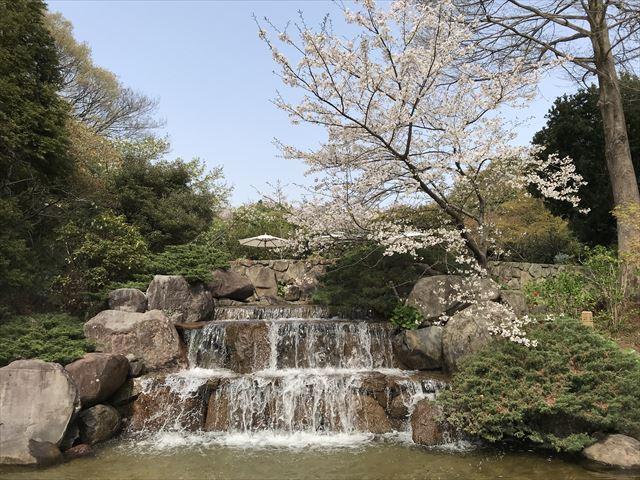 須磨離宮公園「植物園」の三段滝