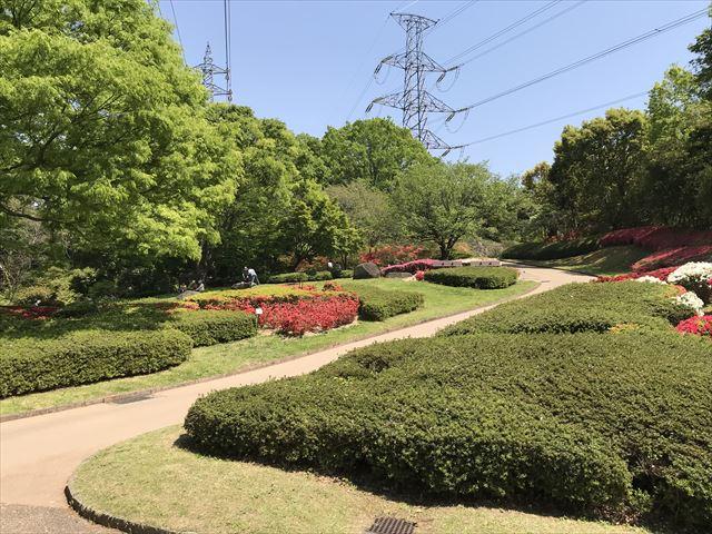 錦織公園「つつじの丘」
