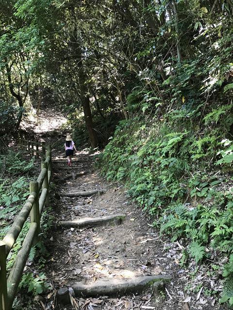 むろいけ園地、水辺自然公園をハイキング。細い道を歩く