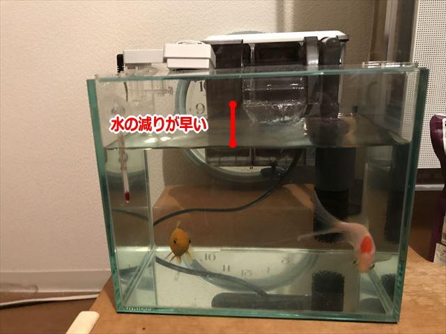 水槽冷却ファンGEX「アクアクールファン・レギュラー」を水槽に取り付けたらすぐに水減るようになった様子