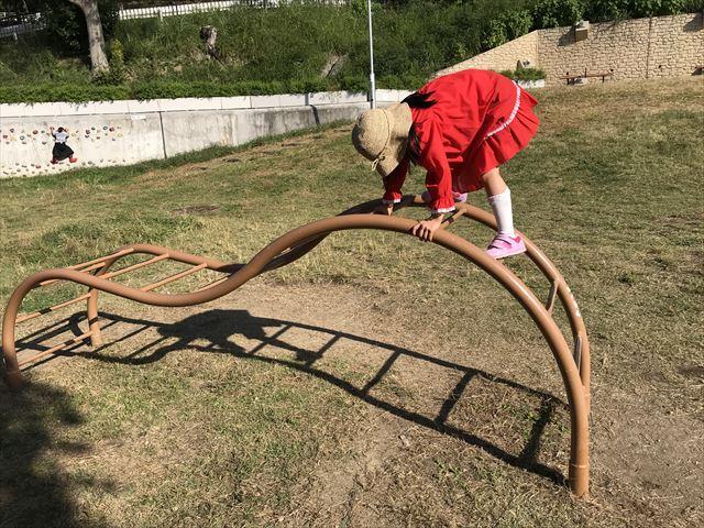 枚岡公園「みんなの広場」にある太鼓橋風のハシゴ