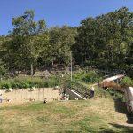 枚岡公園「みんなの広場」ローラー滑り台と芝生広場