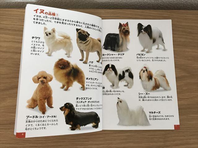 ハッピーセット「小学館の図鑑NEO」動物(犬のなかま)のページを開いた様子
