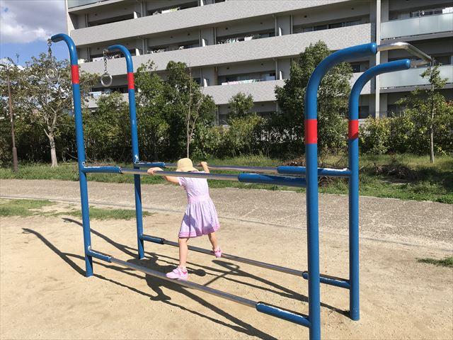 鳳公園の複合遊具「健康器具」