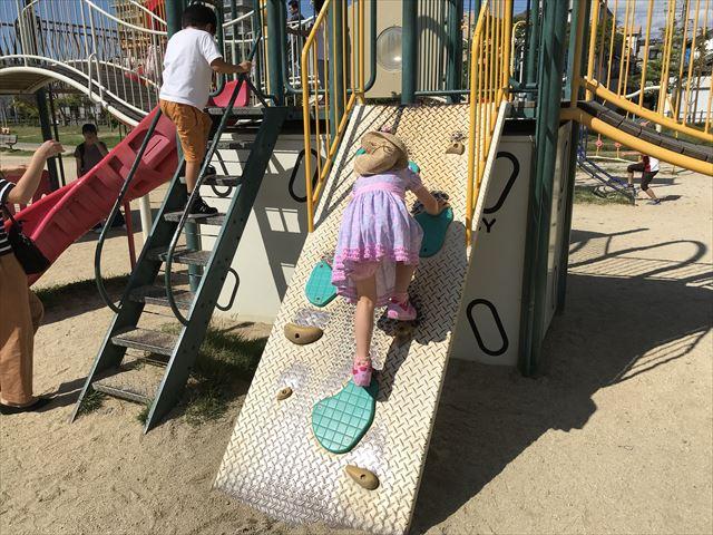 鳳公園の複合遊具「ミニボルダリング」