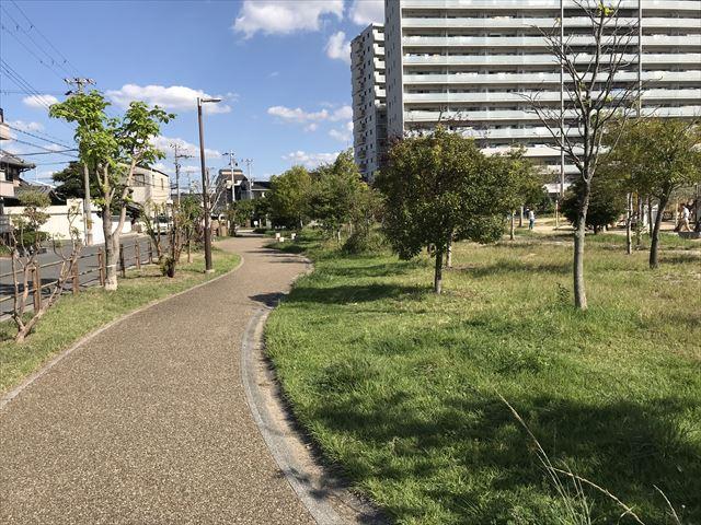 鳳公園の遊歩道
