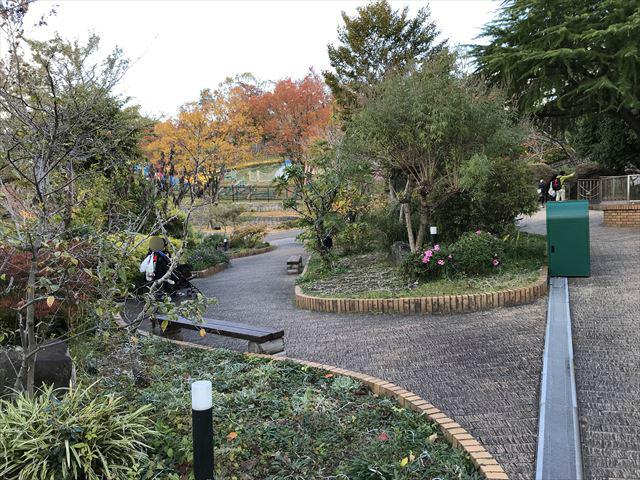 「ひらかたパーク」緑とベンチ