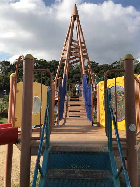 「西代蓮池公園」の複合遊具、はしご