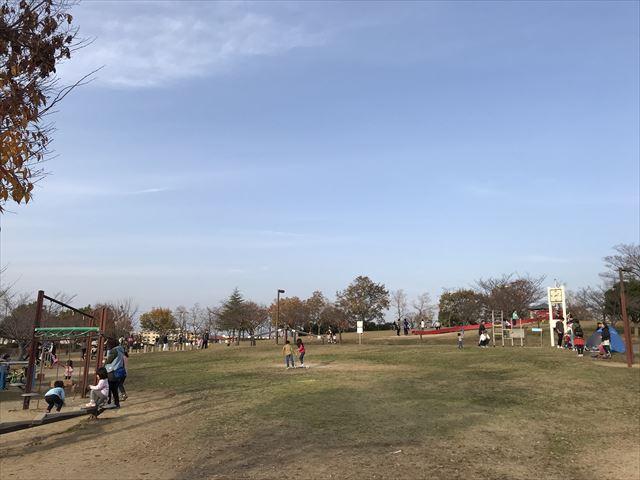 大和郡山市「九条公園」芝生広場(手前)と遊具(奥)