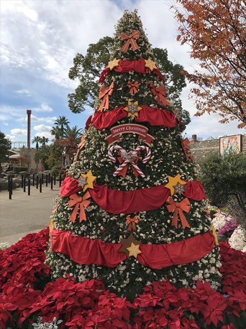 ひらかたパークのクリスマスツリー