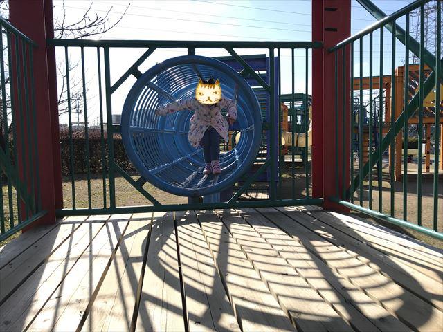 松原市「新町南公園」の大型遊具、輪をくぐって出てきた様子