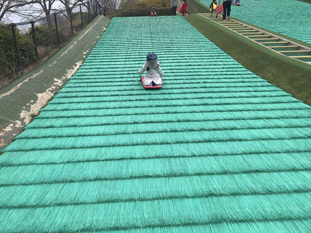 竹取公園の「ちびっ子ゲレンデ」でソリ遊びをする娘