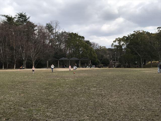 「大渕池公園・東地区」芝生広場