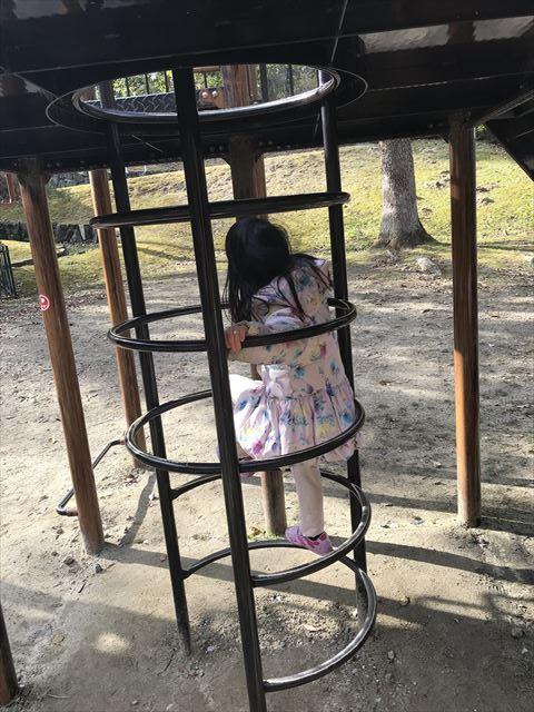 大渕池公園西地区の複合遊具(ミニアスレチックタイプ)。輪になったハシゴ