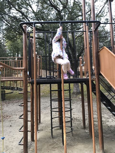 大渕池公園西地区の複合遊具(ミニアスレチックタイプ)。上り棒で遊ぶ娘