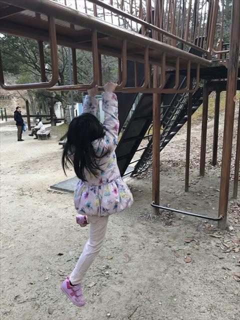 大渕池公園西地区の複合遊具(ミニアスレチックタイプ)。雲梯で遊ぶ様子